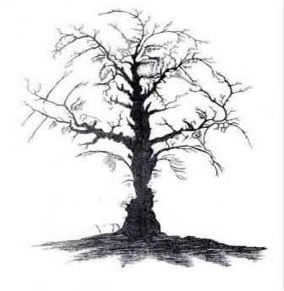 Sunt 10 chipuri în acest copac ?